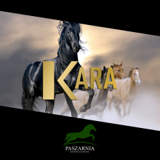 Suplementy Hippoforme serii KARA