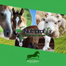 Produkty firmy NUTRIPROF